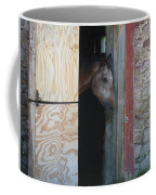Peak A Book Horse Coffee Mug