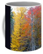 Peak And Past Foliage Coffee Mug