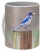 Peanut Any One? Coffee Mug