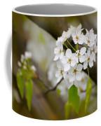 Pear Blossoms Coffee Mug