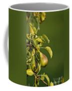 Pear Tree Coffee Mug