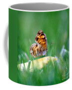 Pearl Crescent Butterfly Square Grass Coffee Mug