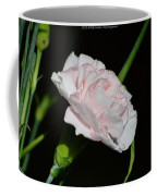Pearl Spotlight Coffee Mug