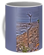 Pebble Beach 4 Coffee Mug