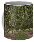 Pecan Orchard Sahuarita Arizona Coffee Mug