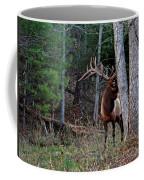 Peek A Boo Bull Coffee Mug