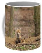 Peeking From The Fox Hole Coffee Mug