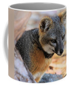 Peering Out Coffee Mug