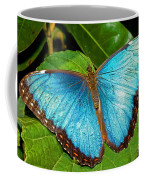 Peleides Blue Morpho Coffee Mug