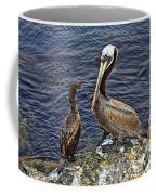 Pelican And American Black Duck Coffee Mug