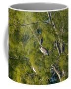 Pelican In The Trees Coffee Mug