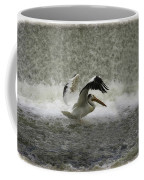 Pelican Landing In Color Coffee Mug by Thomas Young