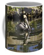 Pelican Reflected Coffee Mug