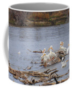 Pelican Rest Stop Coffee Mug