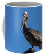 Pelican Watch Coffee Mug