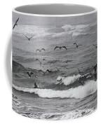 Pelicans Lunching At Ft. Stevens Oregon Coffee Mug