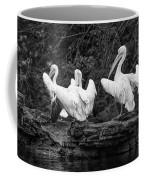 Pelicans Mono Coffee Mug