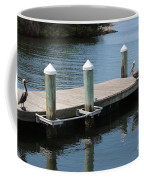 Pelicans On Dock In Florida Coffee Mug