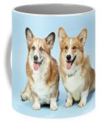 Pembroke Welsh Corgis Coffee Mug