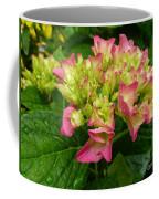Pending Beauty In The Rain Coffee Mug