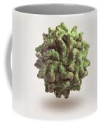 Penicillium Stoloniferum Virus Coffee Mug