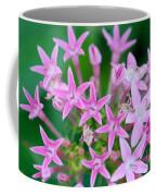 Pentas 'cranberry Punch' Flowers Coffee Mug