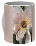 Peonie In Soft Pink Coffee Mug