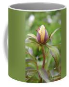 Peony Bud Coffee Mug