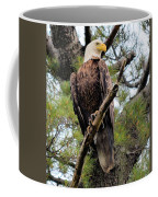 Perched After The Hunt Coffee Mug