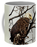 Perched On High Coffee Mug by Thomas Young