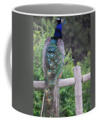 Perched Peacock Coffee Mug