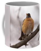 Perched Robin Coffee Mug