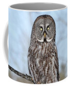 Perching Perfect Coffee Mug