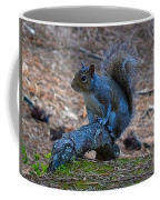 Perching Squirrel Coffee Mug