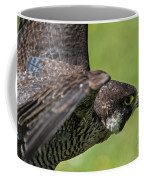 Peregrine Falcon 4 Coffee Mug