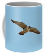 Peregrine Falcon In Flight Coffee Mug