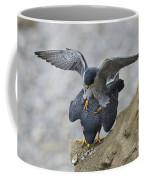 Peregrine Falcons Mating Coffee Mug