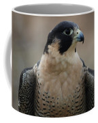 Peregrine Profile Coffee Mug