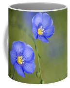 Perennial Flax Flowers Coffee Mug