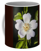 Perfect Dog Rose Coffee Mug