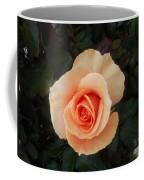 Perfect Peach Rose Coffee Mug