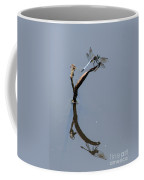 Perfect Reflection Coffee Mug