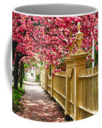 Perfect Time For A Spring Walk Coffee Mug