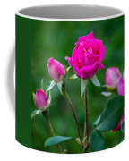 Perfectly Pink 2 Coffee Mug