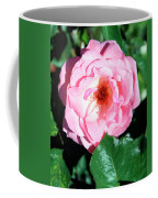Perfectly Pink Palm Springs Coffee Mug