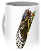 Periodical Cicada Coffee Mug