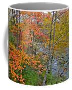 Perkiomen Creek - Perkiomenville Pa - Autumn Foliage Coffee Mug