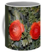 Persian Buttercups Coffee Mug