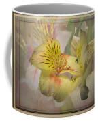 Peruvian Lily Framed Coffee Mug