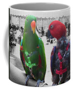 Pet Parrots In A Cafe Coffee Mug
